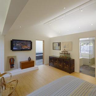 Пример оригинального дизайна: хозяйская спальня среднего размера в стиле модернизм с белыми стенами, стандартным камином, фасадом камина из штукатурки и полом из бамбука