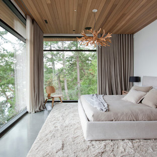 Modelo de dormitorio principal, moderno, grande, sin chimenea, con paredes blancas y suelo de cemento