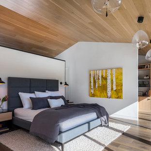 Modelo de dormitorio principal, rural, sin chimenea, con paredes blancas y suelo de madera oscura