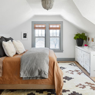Bedroom - eclectic guest beige floor bedroom idea in Chicago with white walls