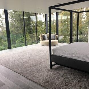 Foto de dormitorio principal, minimalista, extra grande, con paredes grises, suelo de madera en tonos medios y suelo gris
