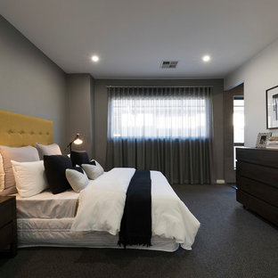 This is an example of a contemporary master bedroom in Sydney with grey walls, carpet and grey floor.