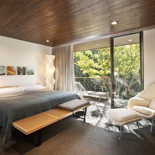 Ispirazione per una camera da letto minimalista con pareti bianche