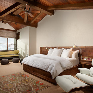 Mountain style carpeted bedroom photo in Other with beige walls and a stone fireplace