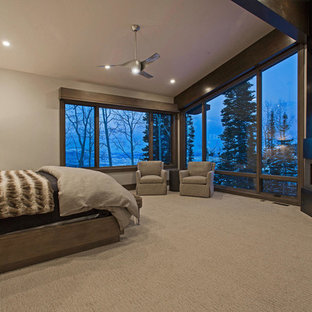 Bedroom - huge contemporary master carpeted bedroom idea in Salt Lake City with gray walls, a corner fireplace and a metal fireplace