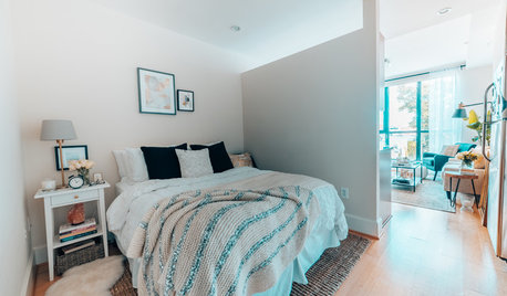 My Houzz: Budget-Friendly Style for a Downtown D.C. Studio