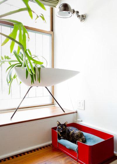 エクレクティック ベッドルーム by Rikki Snyder
