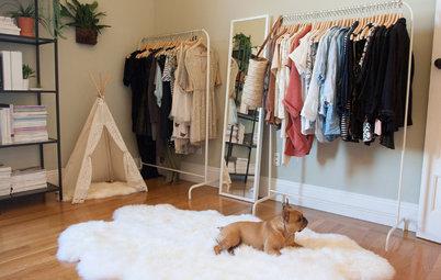Le Più Belle Cucce per Cani Amanti del Design