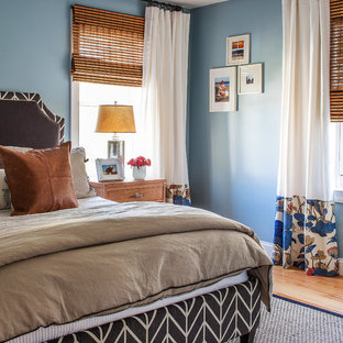 Inspiration for a transitional medium tone wood floor bedroom remodel in Boston with blue walls and no fireplace