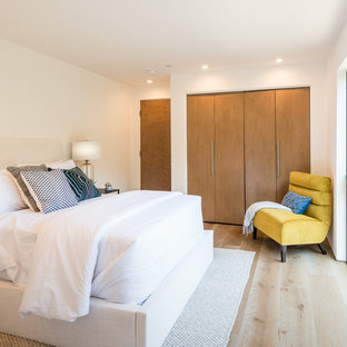 Inspiration for a huge contemporary guest medium tone wood floor and brown floor bedroom remodel in Los Angeles with white walls