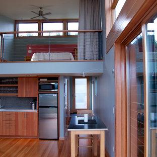 Modelo de dormitorio tipo loft, actual, pequeño, con paredes azules y suelo de madera clara