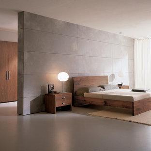 フィラデルフィアのモダンスタイルのおしゃれな寝室 (グレーの壁) のインテリア