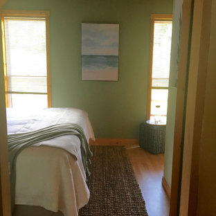 This is an example of a small beach style guest bedroom in Other with green walls, laminate floors and orange floor.