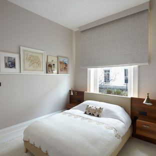 Inspiration for a modern bedroom remodel in London with gray walls