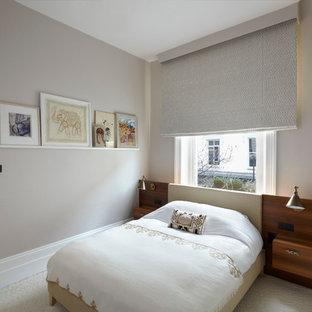 Ispirazione per una camera da letto moderna con pareti grigie