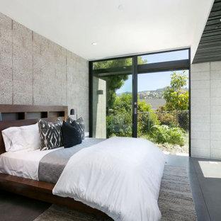 Esempio di una camera da letto minimal con pareti grigie, pavimento in cemento e pavimento grigio
