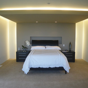 Inspiration for a modern carpeted bedroom remodel in San Francisco