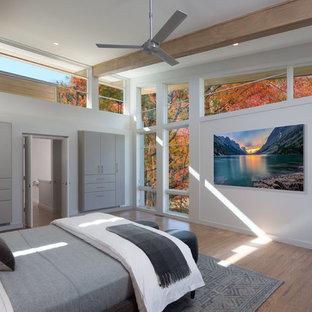Mittelgroßes Modernes Hauptschlafzimmer mit grauer Wandfarbe, braunem Holzboden, Kamin und gefliester Kaminumrandung in Atlanta