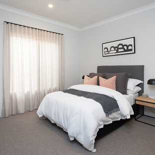 Design ideas for a contemporary guest bedroom in Brisbane with grey walls, carpet and grey floor.