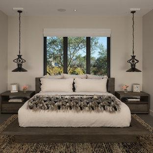 Foto de habitación de invitados actual, extra grande, sin chimenea, con paredes blancas, suelo de cemento y suelo gris