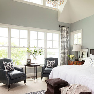 Example of a transitional carpeted bedroom design in Minneapolis with gray walls