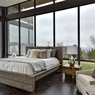 Inspiration for a contemporary master dark wood floor bedroom remodel in Austin with black walls