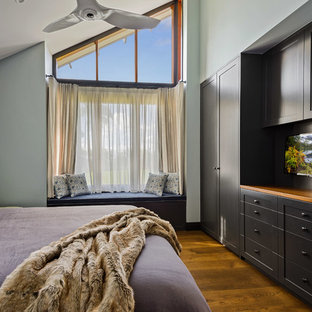 Transitional bedroom in Other with blue walls, dark hardwood floors and no fireplace.