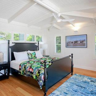 Modelo de dormitorio principal, exótico, de tamaño medio, con paredes blancas y suelo de madera clara