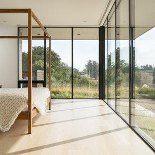 Bedroom - modern light wood floor and beige floor bedroom idea in San Francisco with white walls
