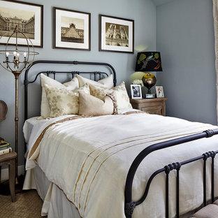 デンバーのトラディショナルスタイルのおしゃれな寝室 (青い壁、カーペット敷き) のレイアウト