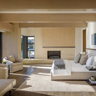 Inspiration for a contemporary master dark wood floor bedroom remodel in Orange County with white walls, a standard fireplace and a stone fireplace