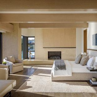 Foto di una camera matrimoniale design con pareti bianche, parquet scuro, camino classico e cornice del camino in pietra