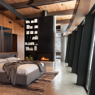 Large trendy master concrete floor and gray floor bedroom photo in Salt Lake City with a ribbon fireplace, a metal fireplace and brown walls