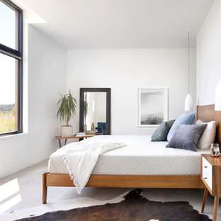 Example of a large danish master concrete floor and gray floor bedroom design in Other with white walls