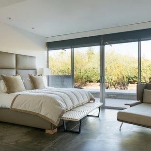 Example of a trendy concrete floor and gray floor bedroom design in Phoenix with white walls