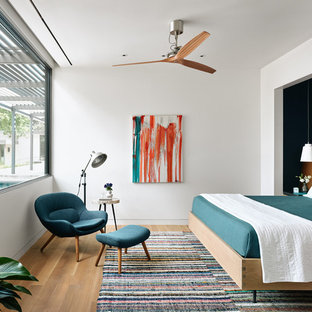 Bedroom - southwestern light wood floor bedroom idea in Other with white walls
