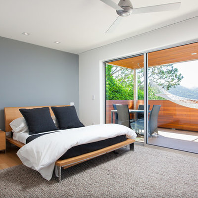 Bedroom - modern light wood floor bedroom idea in San Francisco with gray walls and no fireplace
