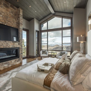 Example of a mountain style dark wood floor and brown floor bedroom design in Other with gray walls, a ribbon fireplace and a stone fireplace
