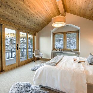 Bedroom - rustic carpeted and beige floor bedroom idea in Other with beige walls