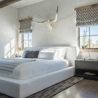Bedroom - rustic medium tone wood floor and brown floor bedroom idea in Other with gray walls