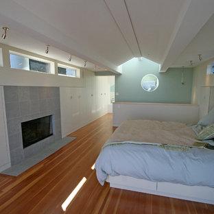 Imagen de dormitorio principal, moderno, de tamaño medio, con paredes blancas, suelo de madera en tonos medios, chimenea tradicional y marco de chimenea de piedra
