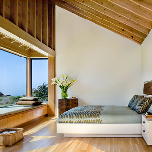 Mountain style master light wood floor bedroom photo in San Francisco with white walls