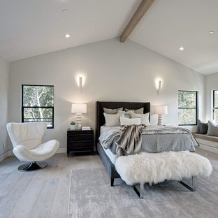 Photo of a large modern loft-style bedroom in San Francisco with white walls, light hardwood floors, a standard fireplace and beige floor.