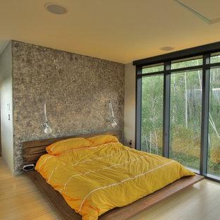 Imagen de dormitorio principal, contemporáneo, de tamaño medio, sin chimenea, con paredes multicolor, suelo de madera clara y suelo beige