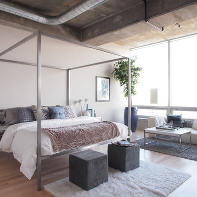 Inspiration for a large contemporary master light wood floor and beige floor bedroom remodel in Baltimore with gray walls