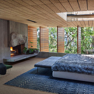 This is an example of a midcentury master bedroom in Los Angeles with carpet, a concrete fireplace surround and grey floors.