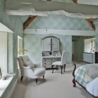 Cette photo montre une grand chambre nature avec un mur bleu.