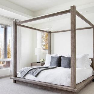 他の地域のラスティックスタイルのおしゃれな寝室 (白い壁、カーペット敷き、グレーの床、折り上げ天井)