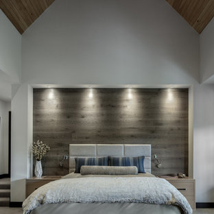 Bedroom - contemporary carpeted and gray floor bedroom idea in Denver with white walls