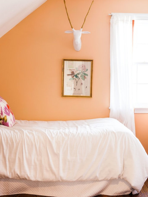 Peach Paint Color Home Design Ideas Pictures Remodel And